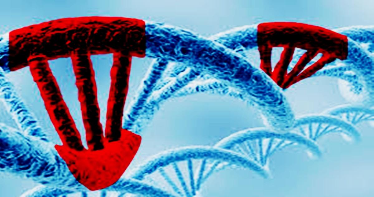 las mutaciones 2