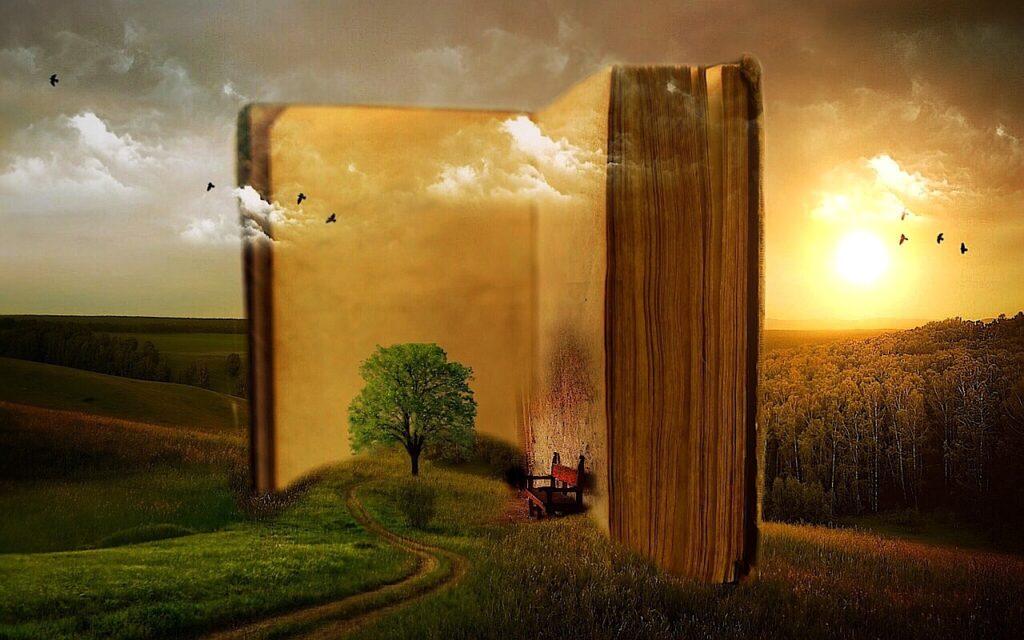 Novelas de amor y humor